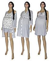 Комплект 02117 Grey Owl для беременных и кормящих 3 предмета +1 (подарок), р.р.42-50