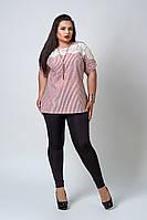 Кофточка мод 520-4 размер 52,54,56,58 красная полоска