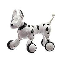 Купить интерактивную игрушку своему ребенку Smart Dog