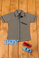 Рубашка для мальчика с коротким рукавом (104,110 см) Турция