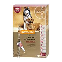 Капли Адвокат для Собак на 10-25 кг (Advocate) от блох и клещей (3 пипетки по 2,5 мл)