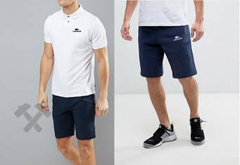 Мужской комплект поло + шорты Lacoste синего и белого цвета (люкс копия)