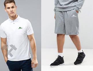 Мужской комплект поло + шорты Lacoste белого и серого цвета