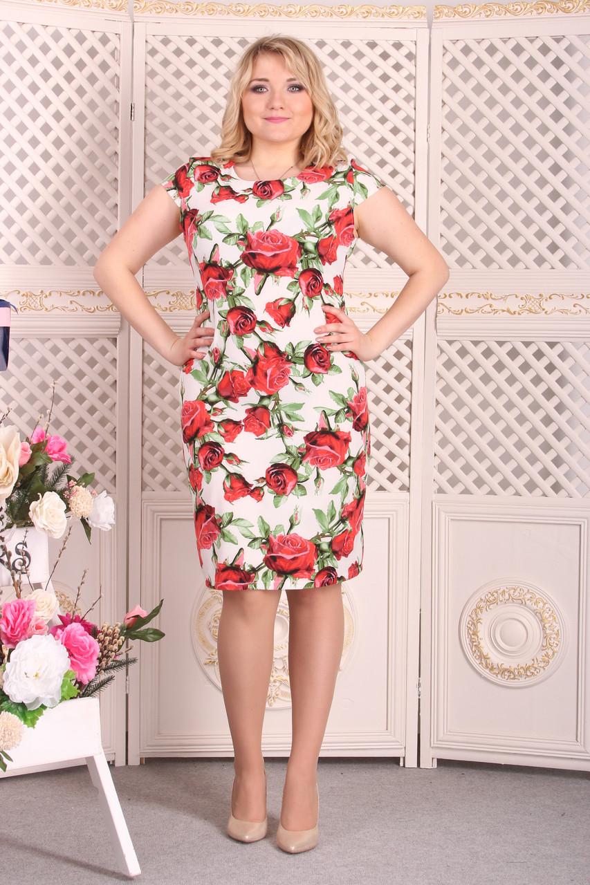 Платье Selta 098 размеры 50, 52, 54, 56