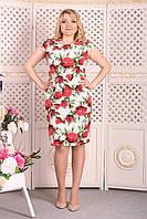 Платье Selta 098 размеры 50, 52, 54, 56, фото 1