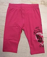 Трикотажные бриджи для девочек оптом, Miss Wifi, 4-12 лет.,арт.  YF-8385, фото 3