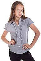 Блузка школьная Альбина разные белая, синяя, серая
