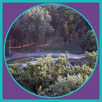 Парк «Таращанец» , фото 1