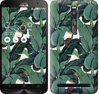 """Чехол на Asus Zenfone 2 ZE551ML Банановые листья """"3078c-122-328"""""""