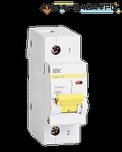 Автоматический выключатель ВА47-100 1P 100A  IEK