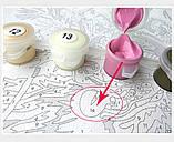 Картина за номерами 40х50 Політ на повітряних кульках (G396), фото 6