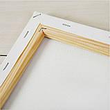 Картина за номерами 40х50 Польові ромашки (GX8436), фото 9