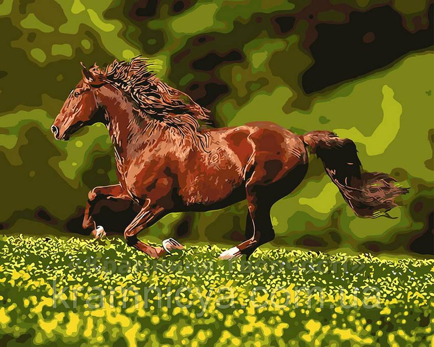 Картина по номерам 40х50 Лошадь на лугу (GX8814)