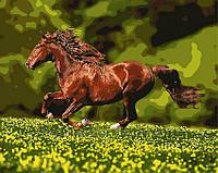 Картина по номерам 40х50 Лошадь на лугу (GX8814), фото 1