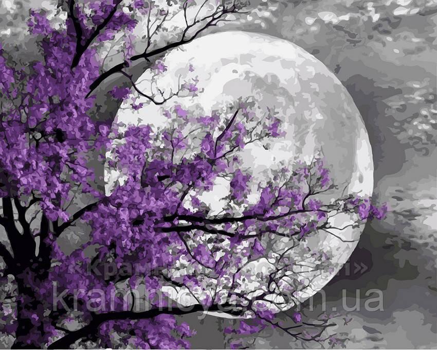 Картина по номерам 40х50 Загадочная луна (GX21587)