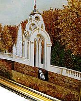 Зеркальная струя Харьков осенний пейзаж из янтаря, фото 3