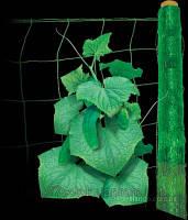 Сетка для плетущихся растений