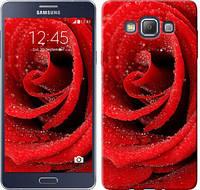 "Чехол на Samsung Galaxy A7 A700H Красная роза ""529c-117-328"""