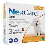 NexGard (Нексгард) - Жевательная таблетка от клещей и блох для собак весом от 2 до 4 кг, 1 шт