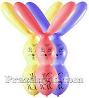 Воздушные шары заяц