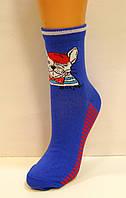 Цветные женские носки с бульдогом