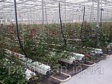Профиль для выращивания цветов, лоток для теплиц, фото 2