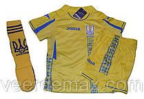 Футбольная форма сборной Украины  детская + Гетры Украина детские