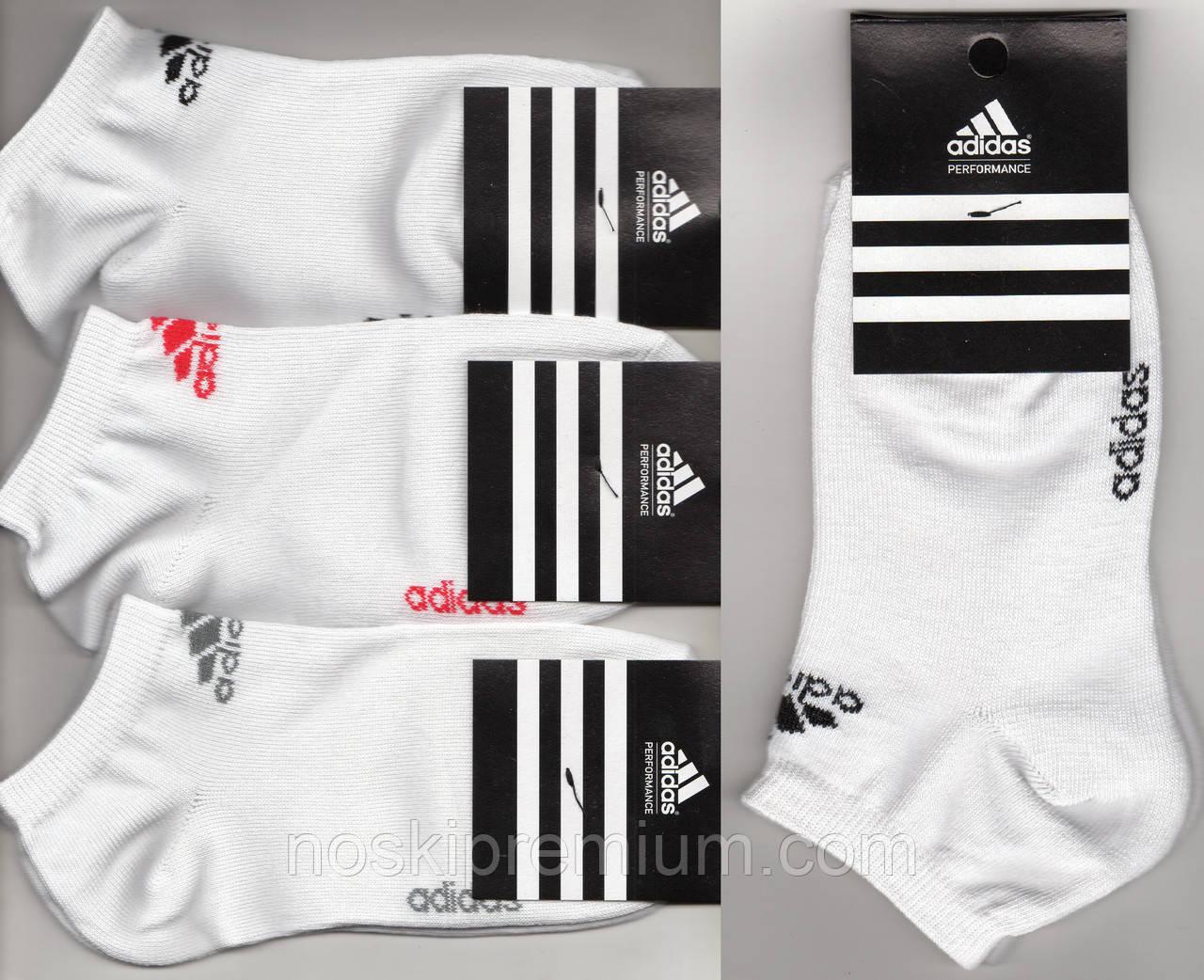 Шкарпетки жіночі спортивні демісезонні х/б Adidas, Туреччина, короткі, білі, 06151