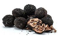 Семена Черный Орех