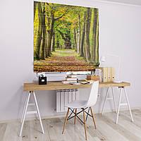 Римская штора Джуси велюр с фотопечатью Осенний парк 1500*1700 делаем любой размер
