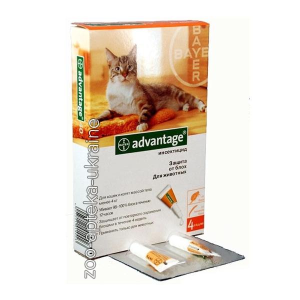 Advantage от клещей для кошек