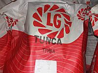 Семена подсолнечника ТУНКА. Заказать гибрид ТУНКА Лимагрейн. Подсолнух ТУНКА Лимагрейн / США, фото 1