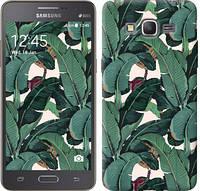 """Чехол на Samsung Galaxy J2 Prime Банановые листья """"3078c-466-328"""""""