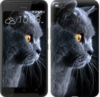 "Чехол на HTC One X9 Красивый кот ""3038c-783-328"""