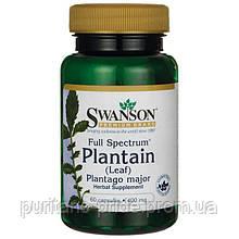 Лист подорожника Swanson Full Spectrum Plantain (Leaf) Plantago Major 400 mg 60 Caps