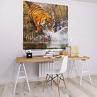 Римская штора Джуси велюр с фотопечатью Тигр у водопоя 1500*1700 делаем любой размер