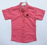 Рубашка 6-8 лет с коротким рукавом , фото 1