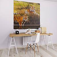 Римская штора Джуси велюр с фотопечатью Пара тигров 1500*1700 делаем любой размер