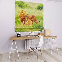 Римская штора Джуси велюр с фотопечатью Пара львов 1500*1700 делаем любой размер