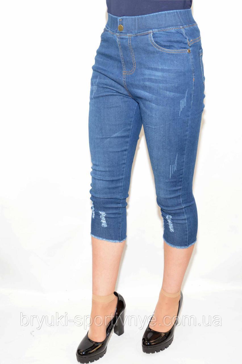 Бриджи женские - джинс с царапками  ( L - XL)