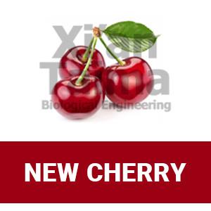 "Xi'an Taima ""New Cherry"""