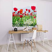 Римская штора Джуси велюр с фотопечатью Поле тюльпанов 1500*1700 делаем любой размер