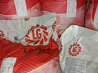 Высокоурожайный подсолнечник ЛГ 5580 Лимагрейн. Семена Лимагрейн 5580 устойчивые к засухе и заразихе купить.