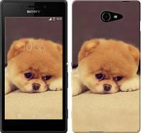 "Чехол на Sony Xperia M2 Aqua Boo 2 ""890c-405-328"""