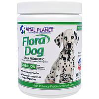 Vital Planet, Flora Dog 20 Billion Ежедневный Пробиотик, 3,92 унций (111 г)