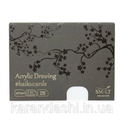 Набор открыток для АКРИЛА HAIKU в коробке 14,7*10,6см, 420г/м2, 20л., Smiltainis, фото 2