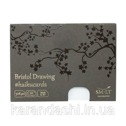 Набор открыток для ГРАФИКИ HAIKU в коробке 14,7*10,6см, 308г/м2, 20л., Smiltainis, фото 2
