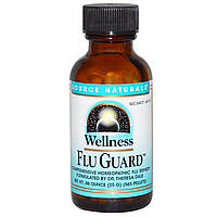 Source Naturals, Wellness FluGuard, .88 унций (25 г), 565 гранул
