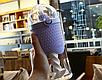 Бутылка шейкер 500мл, фото 7