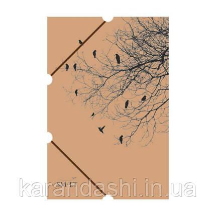 Папка для живописи А3 (350х480мм), SMILTAINIS 3APL-PS/G, фото 2